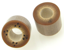 Bamboo Cylinder Plugs, Burnt Dots