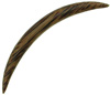 Coconut Wood Long Curved Septum Tusk, 2 gauge - 00 gauge