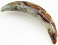 Large Gauge Mottled Serpentine Curved Septum Tusk